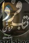 الهیه- شرح حال عارف ربانی سیدمحمدحسن الهی طباطبایی