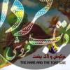 داستانهای حکمتآموز از زندگی حیوانات- مجموعه 12 جلدی
