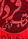 فرهنگ فارسی به روسی(2جلدی)، وزیری- اندیکس دار
