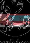 سفرهای اتوبوس قرمز(خوزستان)