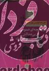 هزارتوی بورخس (تاریخچه ای عمومی از بی عدالتی و شرارت (داستان های تخیلی))