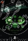 قصههای سرزمین اشباح ج12- پسران سرنوشت