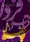 تاریخ ادبیات ایران (جلد چهارم)