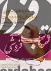 نظریه های عمومی سازمان و مدیریت و درک متون به زبان فارسی