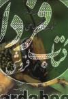 حشره شناسی مقدماتی و آفات مهم گیاهی ایران