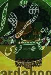 مولانا و طوفان شمس