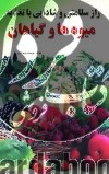 راز سلامتی و شادابی با تغذیه میوه ها و گیاهان