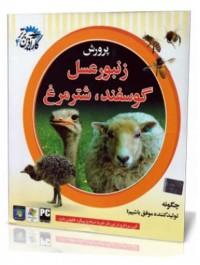 پرورش زنبور عسل. گوسفند,شتر مرغ (DVD)
