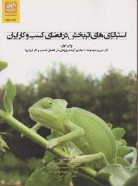 استراتژی های اثربخش در ففضای کسب و کار ایران