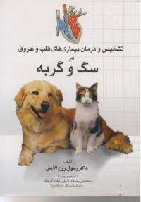 تشخیص و درمان بیماری های قلب و عروق در سگ و گربه